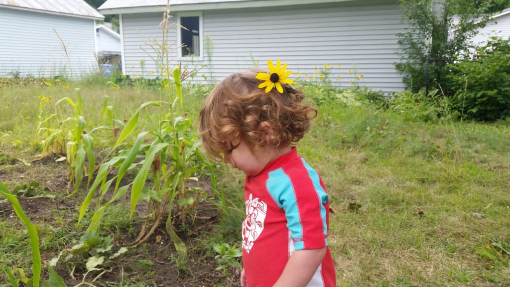 a curly haired toddler with a flower in his hair stands in a corn, beans, and squash garden